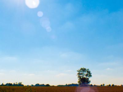 Midwestern Sun