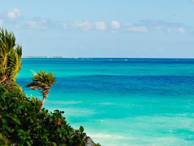 The Caribbean Sea